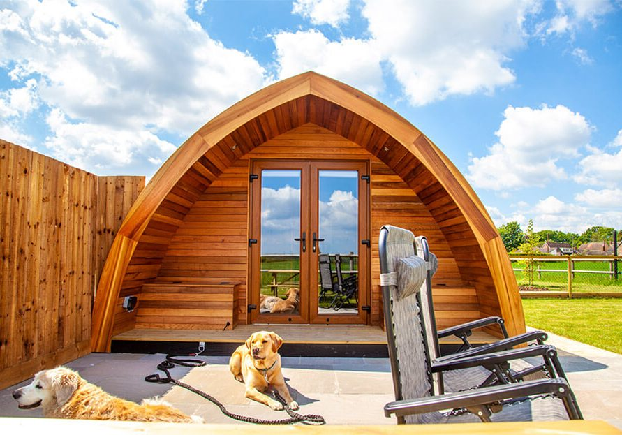 Swallows Field Pod pet friendly